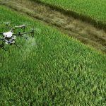 pulverizacao-de-precisao-com-drone[1]